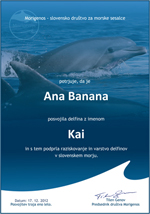 ... the name of the dolphin, a biography of the chosen dolphin with his best photos (all in English language). Adopters will also receive a gift: a ...